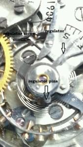 hamilton regulator