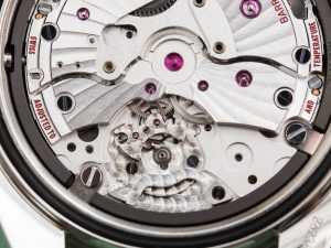 Omega-Seamaster-Watch-Movements-compared-13